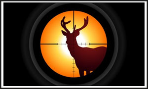Best rifle scope for 100 yards