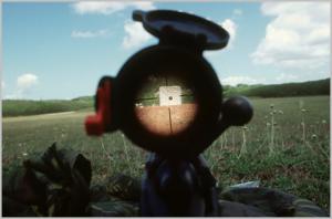 Rifle scope at 100 yards