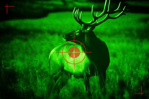 Night Vision in Hunting