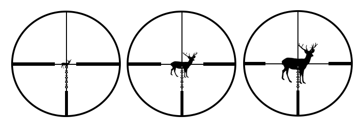 Different types of reticle