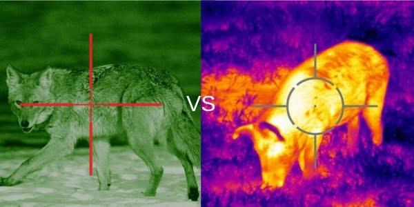 Night Vision Image Vs. Thermal Image