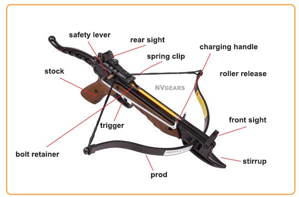 Anatomy of Pistol Crossbow