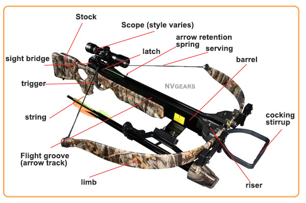 Anatomy of Recurve Crossbow