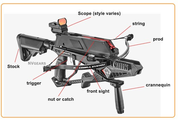Anatomy of Repeating Crossbow