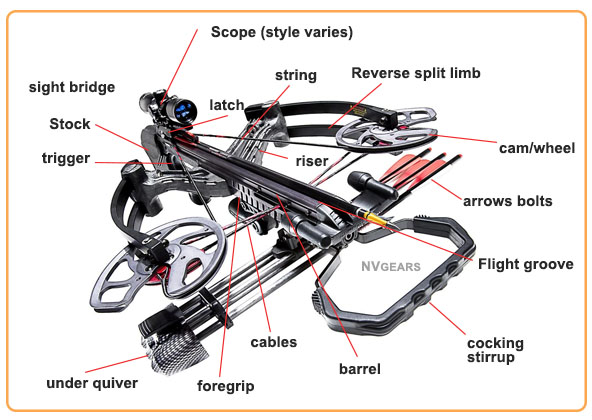 Anatomy of Reverse Draw Crossbow