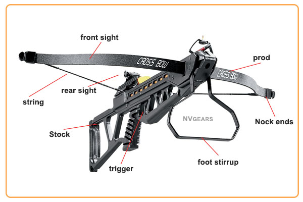 Anatomy of Rifle Crossbow