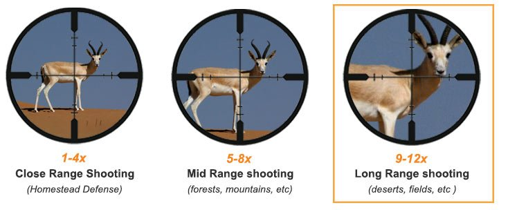 Magnification Ranges For Long range rifle scope